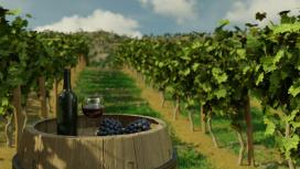 В Winery Simulator нам позволят продегустировать приготовленное вино