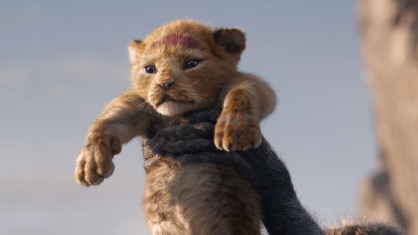 185 миллионов долларов! Сборы «Короля льва» бьют рекорды
