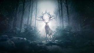 Война и монстры в тизере экранизации фэнтези «Тень и кость» Netflix