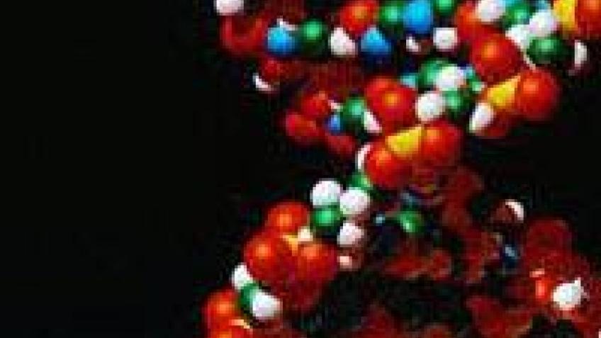 Google инвестирует в ДНК