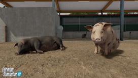Авторы Farming Simulator22 рассказали о животных и животноводстве