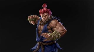 В Monster Hunter Rise пройдёт коллаборация со Street Fighter