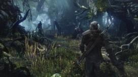 CD Projekt RED обещает больше не переносить релиз The Witcher3