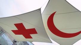 Красный Крест призывает разработчиков приучать игроков к ответственности