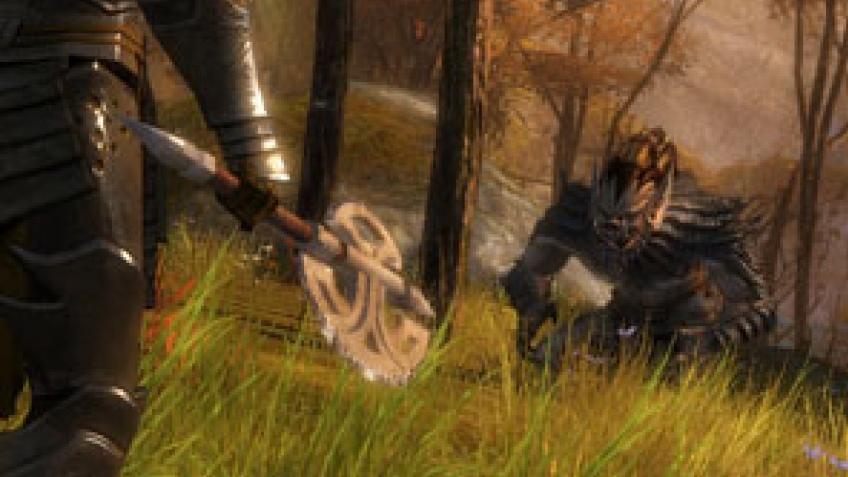 Guild Wars2. Сначала на РС, потом, может быть, на консолях