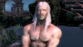 В The Elder Scrolls V: Skyrim добавили расу Ведьмаков