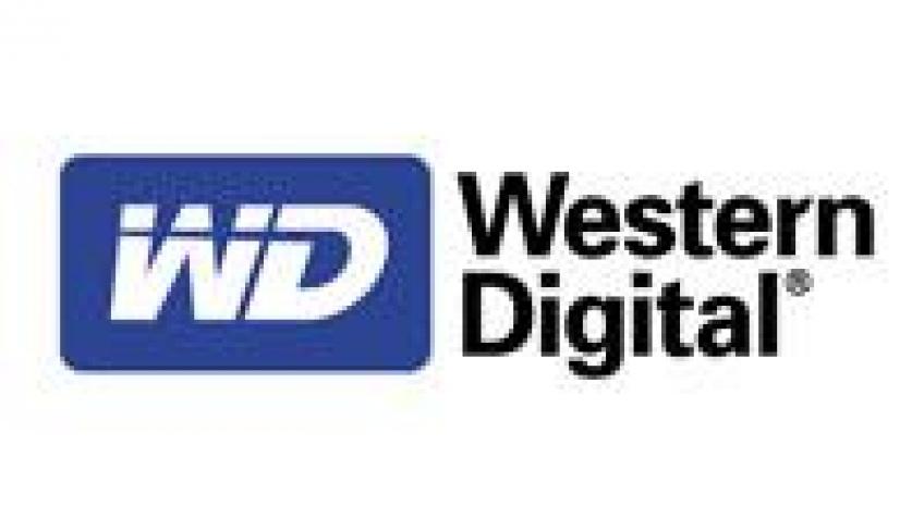 WD может выйти на рынок SSD