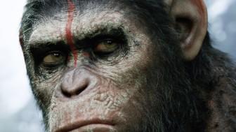 Кто ты из «Планеты обезьян»? Викторина от «Игромании»