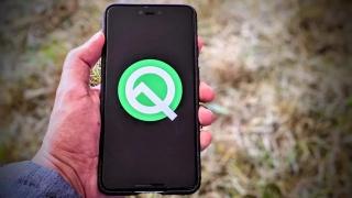Android Q получила официальное название