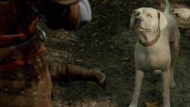 Собаку в Baldur's Gate3 погладили 400 тысяч раз