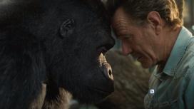Появился трейлер фильма Disney с Брайаном Крэнстоном и говорящей гориллой
