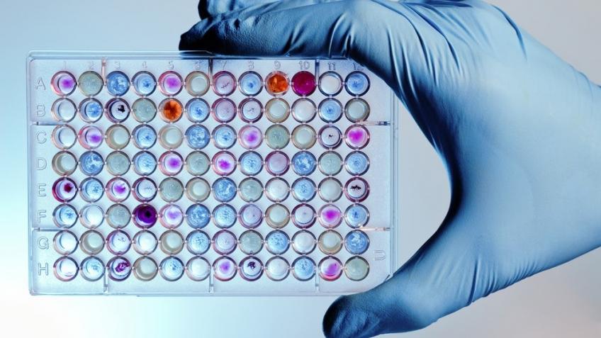 В Гарварде создали систему чтения и записи данных в органические молекулы