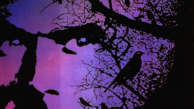 Роман Кинга «Тёмная половина» снова станет фильмом