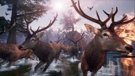 Не белкой единой: приключение AWAY: The Survival Series вынесли на Kickstarter