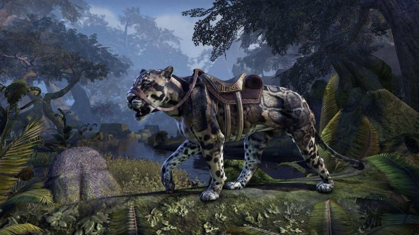 Bethesda подарит леопарда тем, кто посмотрит панель The Elder Scrolls Online на Е3