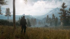 Days Gone на PC оценили выше, чем на PS4
