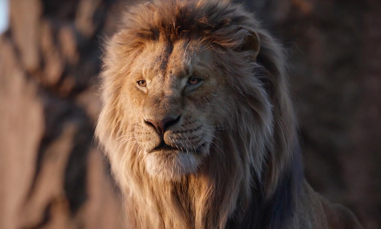 В разработку запущен сиквел «Короля льва» от режиссёра «Лунного света»