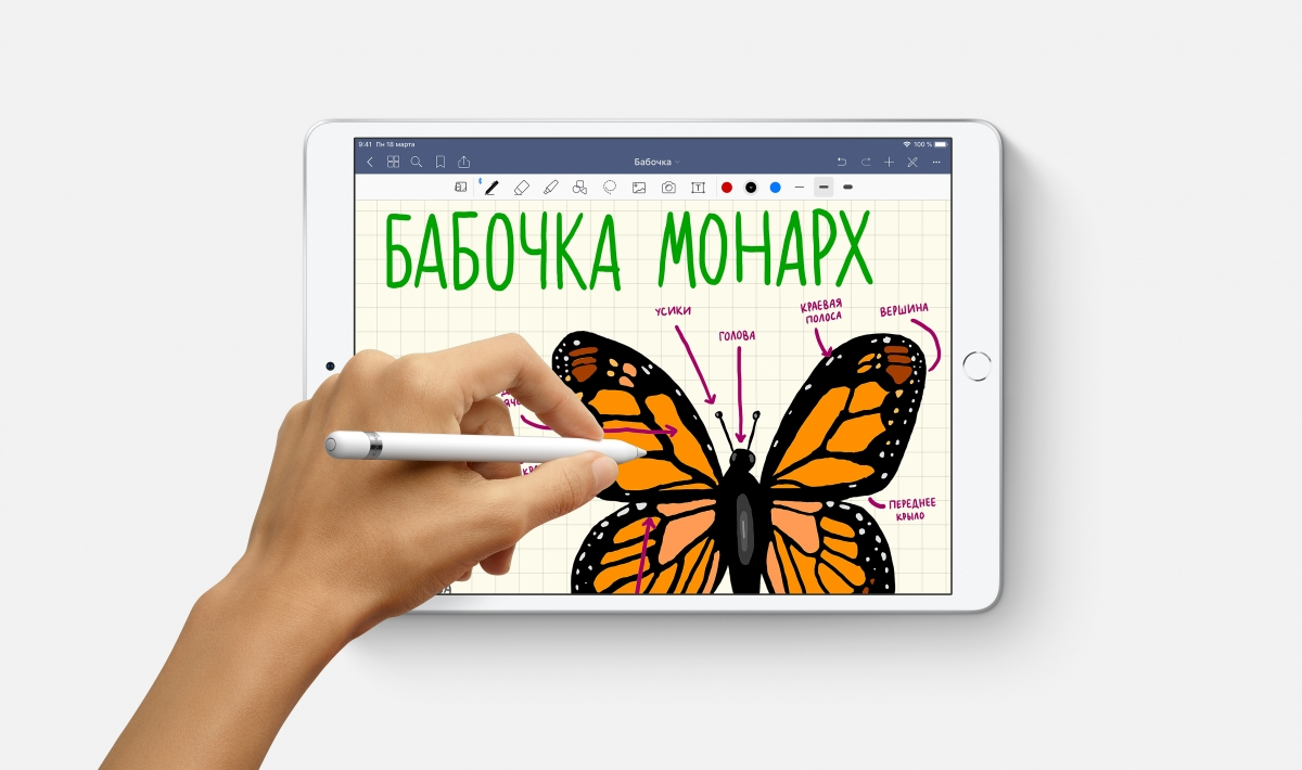 Apple представила обновлённые планшеты iPad mini и iPad Air