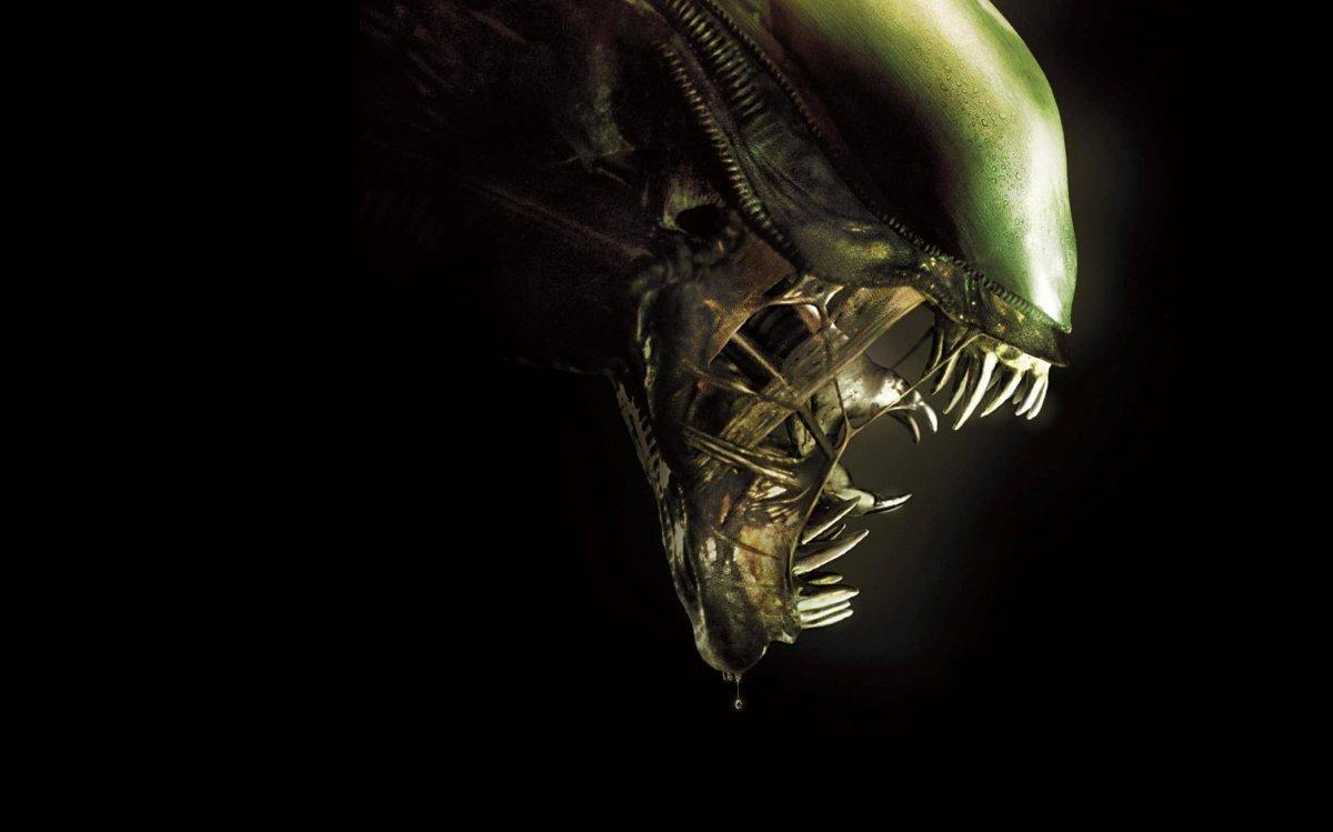 Ридли Скотт подтвердил, что в разработке находится новый «Чужой»