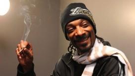 Рэпер Snoop Dogg записал видеообращение к Биллу Гейтсу