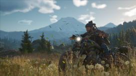 Автор Days Gone: оценки игр для Sony могут быть важнее их продаж
