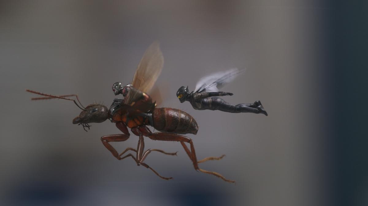 «Мир фантастики»: роль Человека-муравья кажется Полу Радду сказкой