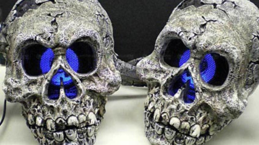 Колонки-черепа и веб-камера со змеей