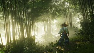Патч для Ghost of Tsushima Director's Cut исправил ошибку с пропавшей бронёй