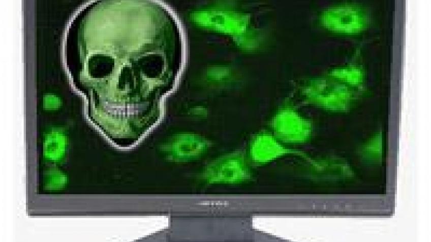 Новый вирус создает массивный ботнет