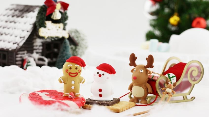 Рождественский набор накопителей Bone