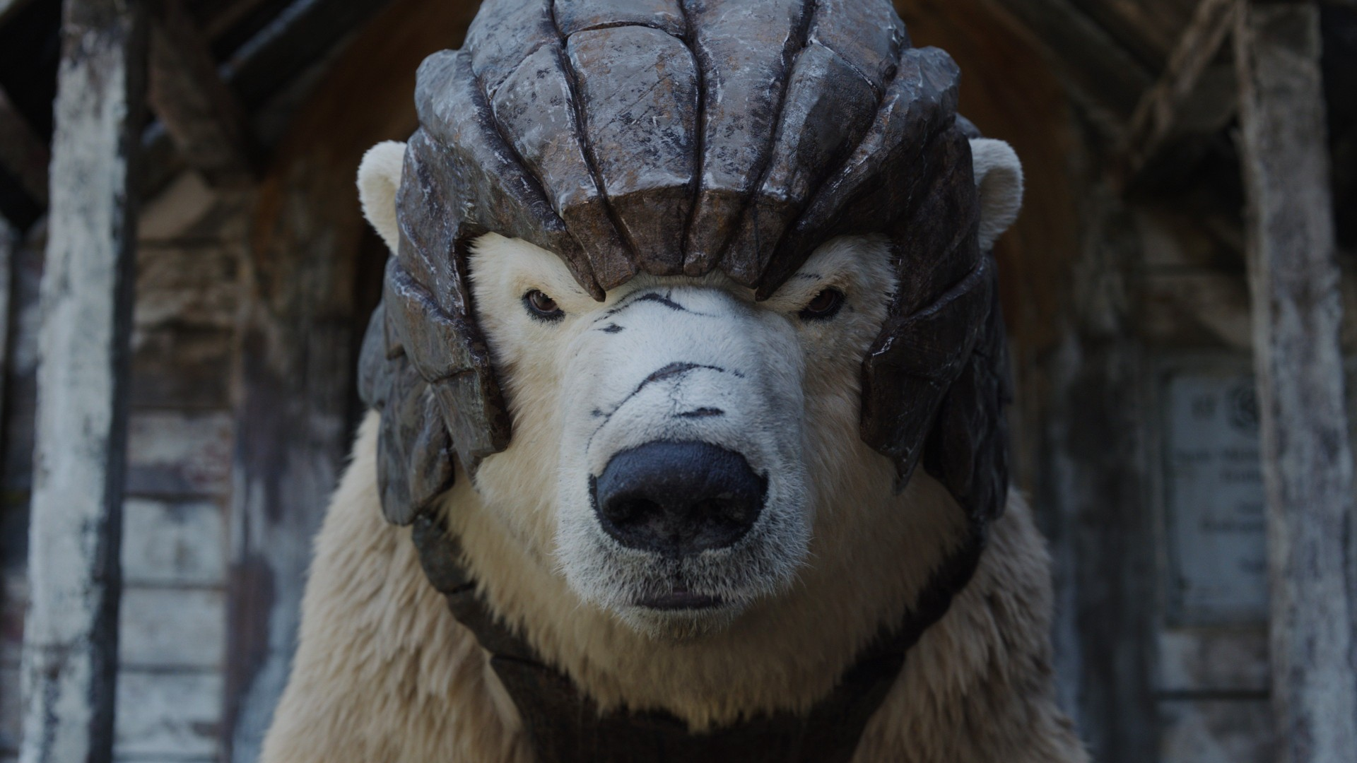 «Тёмные начала», «Хранители», Westworld, «Молодой папа»: HBO напоминает о премьерах