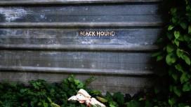 Подробнее о таинственном проекте Black Hound расскажут завтра