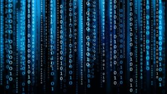 Интересуетесь ли вы языками программирования? Если да, то какими?
