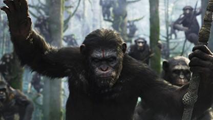 Тест «Планета обезьян: Революция»