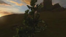 Overgrowth - Trees in Breeze Trailer