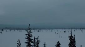 The Long Dark. Короткометражка ELEGY