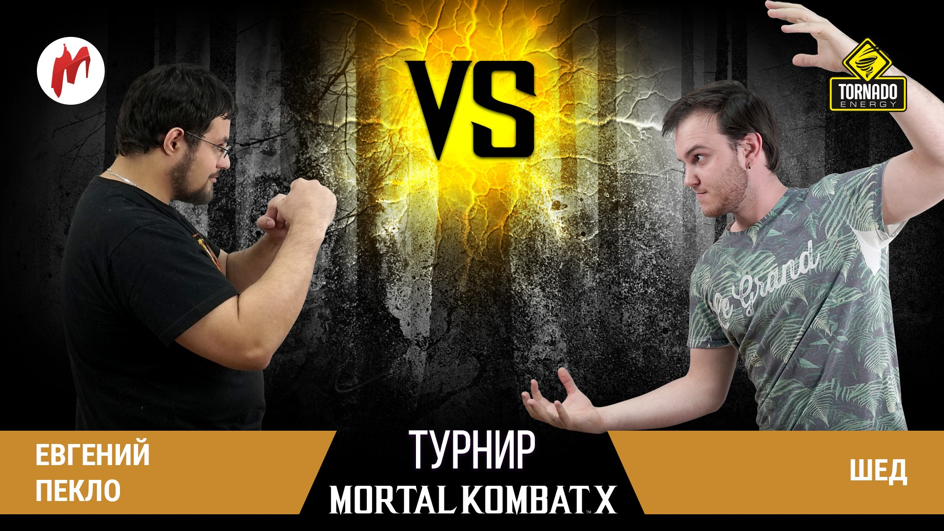 Турнир Игромании по Mortal Kombat X! 1/4 финала: Евгений Пеклоvs.Шед